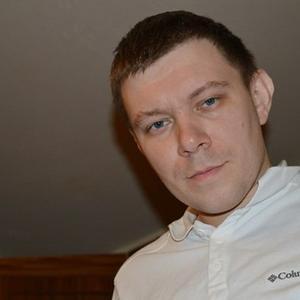 Владимир, 38 лет, Кировск