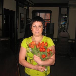 Галина, 44 года, Чудово
