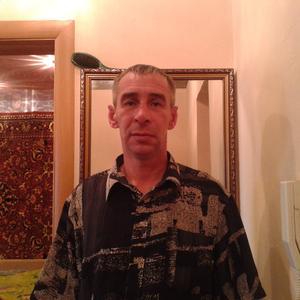 Андрей, 42 года, Южноуральск